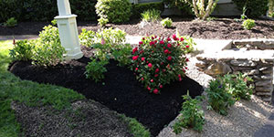 residential landscaping flower bed
